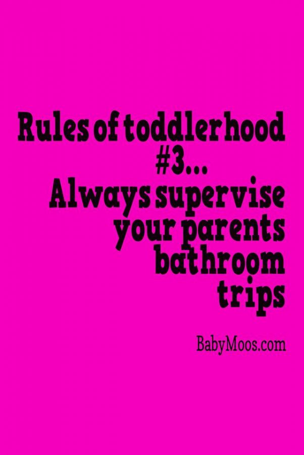 Funny Toddler Quotes